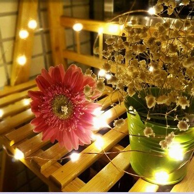 30LED Battery Micro Rice Wire Copper Fairy Party  Home Decoration String Lights