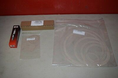 Fulton Burner Rebuild Kit for Boiler 4-50-SP0401