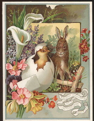 Large 1890S Tc, Woolson Spice Co. Advertising, Easter Theme, Rabbit & Baby Chick