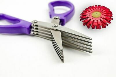 Quilled Creations: Fringing Scissors