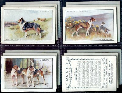 Tobacco Card Set, John Player, DOG BREED SCENIC Picture, XL, 1924