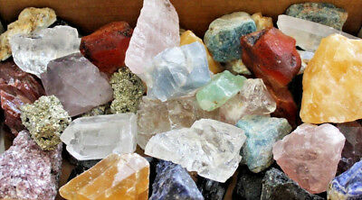 1000 Carat Lot Bulk Crafters Natural Gems Mixed Crystals Rough Minerals (7 oz)
