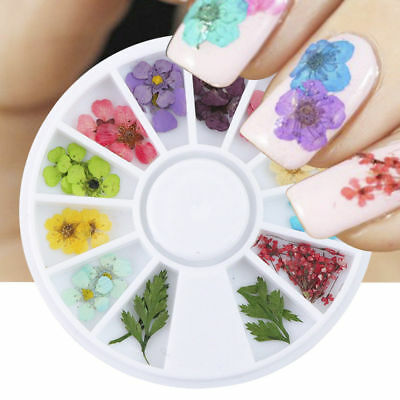 12 Colors Real Dried Flowers Nail Art Charming DIY Tips Decor Manicure Wheel