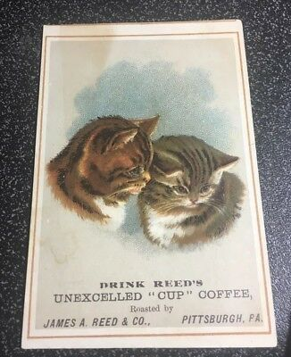 Vintage Cat Themed Victorian Trade Card -  James A Reed, Pittsburg Pa Cup Coffee