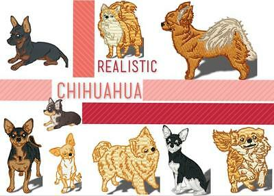 Realistic Chihuahua 10  Machine Embroidery Designs Cd 2 Sizes