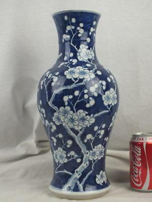 "Good Large 14"" 19Th C Chinese Porcelain Kangxi Marks Blue & White Prunus Vase"