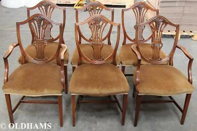 Great Set of 6 Vintage Shield Back Dining Chairs in Mahogany