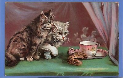 Superb 1905 Cute Fluffy Kittens Cats Eyeing Up Food & Tea Cup Vintage Postcard