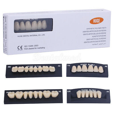 28pcs/Pack Dental 2 Layers Synthetic Polymer Resin Teeth Set A2 A3, T10 S8 T8