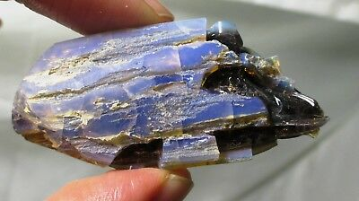 111 ct Opalized wood fossil limb  - contra luz - Virgin Valley opal NV fossil