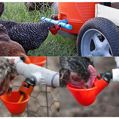 4 Pack 6' Poultry Water Drinking Cups Chicken Hen Plastic Automatic Drinker