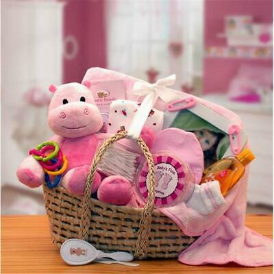 Gift basket 890193P Our Precious Baby Carrier - Pink