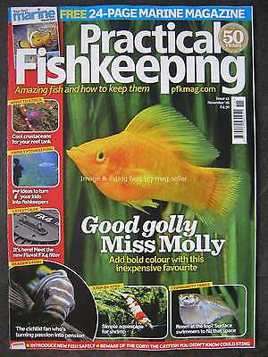 Practical Fishkeeping November 2016 Molly Rift Valley Cichlid Crustaceans Shrimp