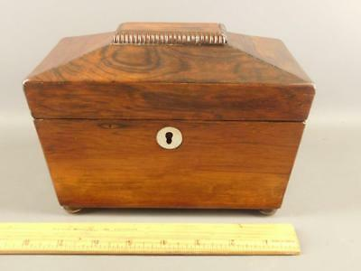 Antique English Regency Rosewood Tea Caddy Box Original Label W.Childs
