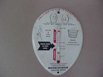 Vintage Egg Basket Thermometer For Keeping Eggs Fresh (Rare & Different) Graphic