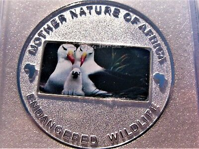 2004 Sea Gulls 10 Kwacha Republic Of Malawi Mother Nature Of Africa Coin