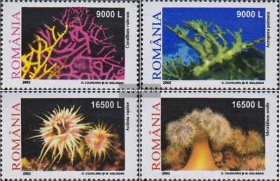 Romania 5634-5637 (complete.issue.) unmounted mint / never hinged 2002 coral and