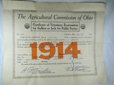1914 Certificate Veterinary Examination For Stallion Or Jack For Public Service