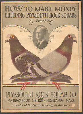 1925 Brochure, How To Make Money Breeding Plymouth Rock Squabs, Farm, Farming