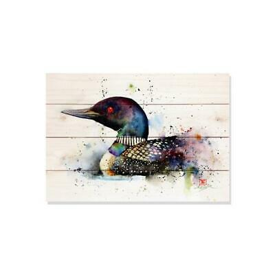 Day Dream DCTL2014 20 x 14 in. The Loon Wall Art
