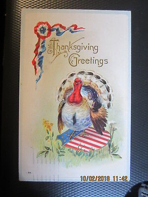 vintage THANKSGIVING postcard PATRIOTIC WHITE TURKEY used w/stamp 1919