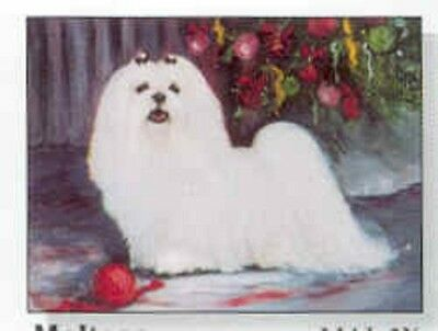 Eight Card Pack MALTESE Dog Breed Christmas Cards