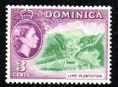 1954-62 DOMINICA 3c lime plantation SG143 mint unhinged