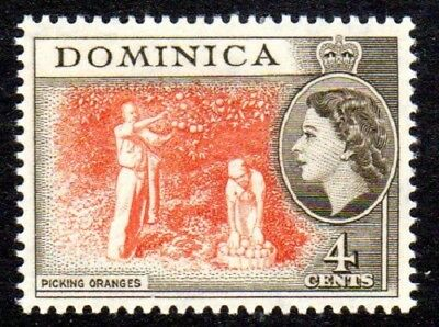 1954-62 DOMINICA 4c picking oranges SG145 mint unhinged
