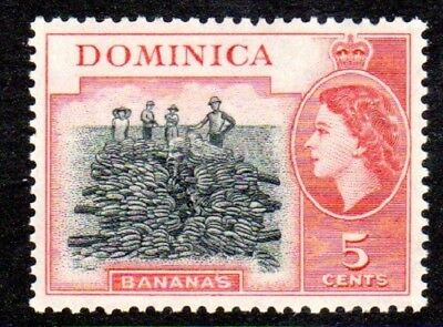 1954-62 DOMINICA 5c bananas SG146 mint unhinged