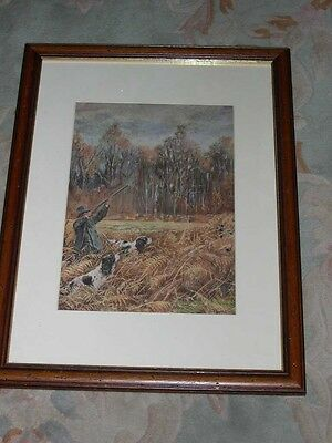 Large Colour Antique English Springer Spaniel Dog Picture 1920 Ward Binks Gundog