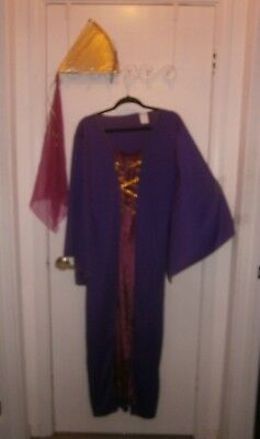 Halloween Costume Adult Maiden Medieval Renaissance Robe & Hat Size Small 2-8