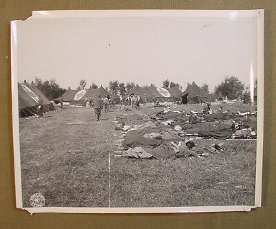 Wwii Us Army Signal Corps Photo – Wounded At Normandy Field Hospital