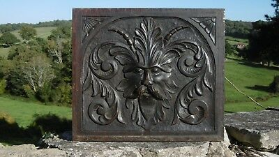 SUPERB 19thc GOTHIC OAK CARVED GREEN MAN PANEL WITH ACANTHUS LEAF