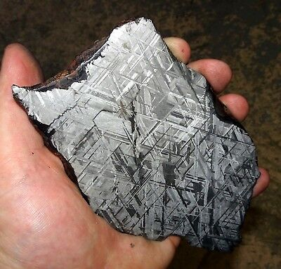 Amazing 326 Gm. Muonionalusta Etched Meteorite Slice