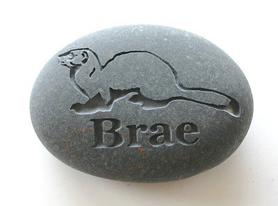 Ferret Pet Memorial Custom Engraved Memorial Stone Pet Loss Personalized Stone
