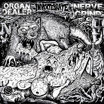 Organ Dealer, Nerve Grind, Invertebrate 3 way split 7 bruce x cambell Recalcitra
