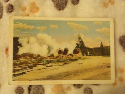 Vintage Postcard Grotto Geyser, Yellowstone National Park, Wyoming