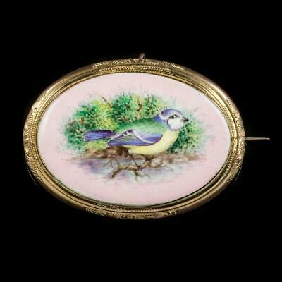 Antique Victorian Hand Painted Blue Tit Brooch 18Ct Gold Gilt Circa 1890