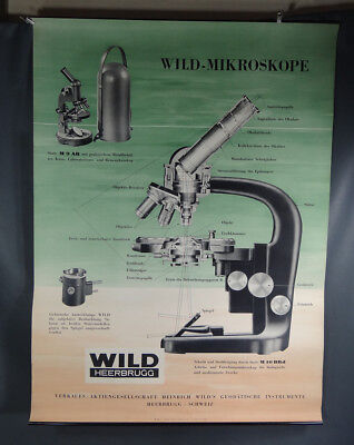 1950s Vintage Swiss Heerbrugg WILD Microscope Scientific M9 M10 Litho Poster 32""