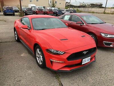 Ford: Mustang EcoBoost FastBack Brand New 2018 Ford Mustang Eco-Boost Fastback 2DR - Race Red