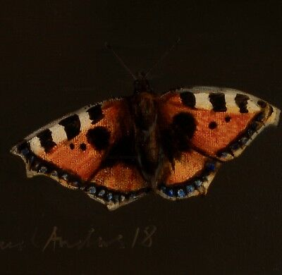 BUTTERFLY: ORIGINAL OIL PAINTING : Tortoiseshell Insect Art by David Andrews