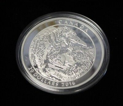 2016 $20 Fine Silver Grizzly Bear : The Battle