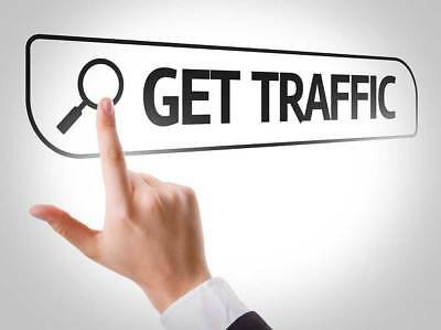 500+ Real Visits - Daily Web Traffic Hits For Your Website For 30 Days