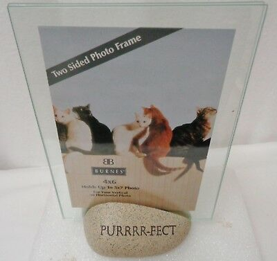 """Cat Two Sided Photo Frame Cat-Astrophe! 4""""x6"""" Glass with Stone Base 2 Pieces"""