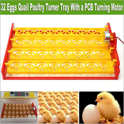 NEW 220V 32 Eggs Quail Poultry Turner Tray With PCB Turning Motor For Incubator