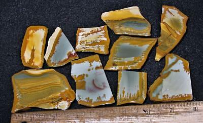ORCA:  Gemmy Old Collection Owyhee Picture Jasper 10 Small Slabs, Oregon
