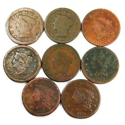 Group Lot of 8 Early U.S. Large Cents - Exact Lot Shown 3027