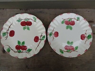 "(2) Blue Ridge Southern Potteries Autumn Apple 10 3/8"" Dinner Plates Excellent"
