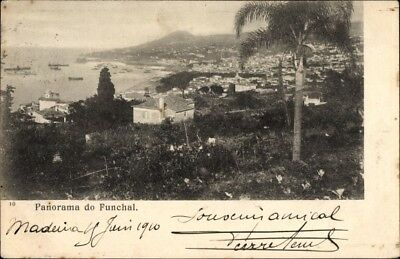 Ak Funchal Insel Madeira Portugal, Panorama vom Ort - 1666735