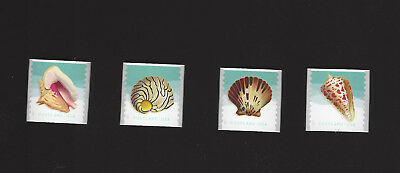 5167 - 5170 Seashells Postcard Forever Coil Singles Set of 4